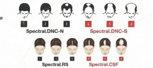 ds head sheet
